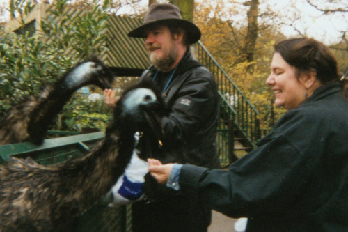 Here we are at Paradise Park, being eaten by emus